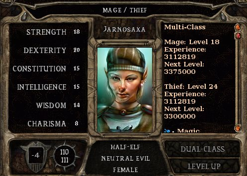 Character screen showing the in-game stats of the Neutral Evil Half-Elf Jarnosaxa